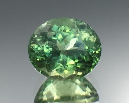 2.71 Cts Green Apatite ~ Insanity ~ Untreated ~ As7