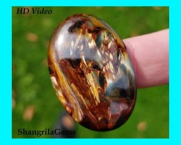 36mm 33ct Pietersite oval cabochon  AAA 36 by 25 by 5mm