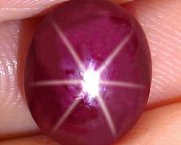 7.15 Carat Fiery Star Ruby - Gorgeous