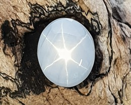 4.41cts  Star Sapphire (CM24)