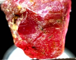 21.8-CTS BURMA RUBY ROUGH RICH PINKY  RED RG-3036