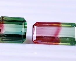 2 Pcs 16.55 Ct Natural - Unheated Bi Color Tourmaline Gemstone