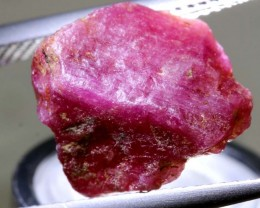 10.9-CTS BURMA RUBY ROUGH  RG-3069