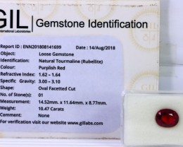 Certified|GIL~ 10.47 Ct Natural - Unheated Rubelite Tourmaline Gemstone
