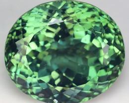 5.55 Cts Green  Apatite ~ Insanity ~ Brazilian ~ Untreated M3