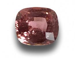 Natural Unheated Padparadscha Loose Gemstone New  Sri Lanka