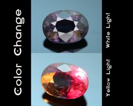 Rarest Garnet 1.06 ct Dramatic Full Color Change SKU-3