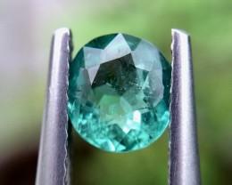 0.80cts  CERTIFIER  Very beautiful Paraiba Tourmaline Gemstones 3d