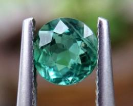 0.87cts CERTIFIER Very beautiful Paraiba Tourmaline Gemstones 3d