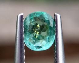 0.45cts NEW ARRIVAL Paraiba Tourmaline Gemstones ddd