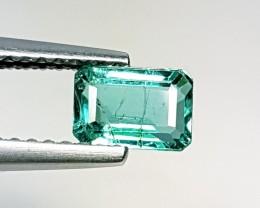 "0.71 ct "" Top Luster Gem "" Octagon Cut Top  Green Natural Emerald"