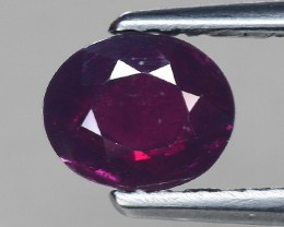 1 Cts Ruby Awesome Color and Luster ~ Mozambique RB3