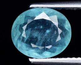 Rare Clarity 1.93 Cts Grandidierite World Class Rare Gem ~ Madagascar GD17