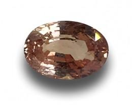 1.63 Carats | Natural Unheated Padparadscha|Loose Gemstone|New| Sri Lanka
