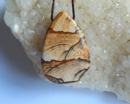 42.5ct New picture jasper gemstone waterdrop  pendant bead (A233)