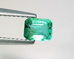 0.69ct Amazing Gem Fantastic Octagon Cut Natural Emerald