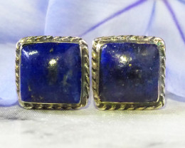 cute lapis lazuli silver Earrings   WS531
