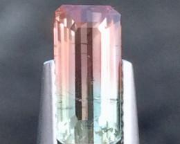 2cts Very beautiful Bi Colour Tourmaline Gemstones ddd