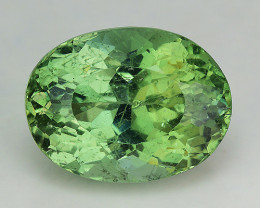 4.37 Cts Green Apatite ~ Awesome Color and Luster ~ Untreated AP24