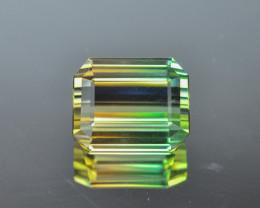 21.10 Cts Fabulous Natural Bi-Colour Tourmaline