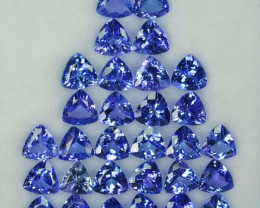 27.72 Cts Natural Tanzanite Purplish Blue 6.5-6.0 mm Trillion 30 Pcs Tanzan