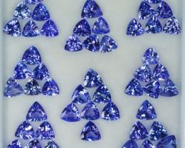 25.60 Cts Natural Tanzanite Purplish Blue 5.0 mm Trillion 49 Pcs Tanzania