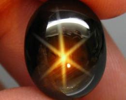 11.50 Carat Natural Black Star Sapphire Thailand