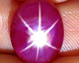 4.75 Carat Star Ruby Cabochon - Gorgeous