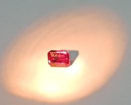 ~BEAUTIFUL~ 1.00 Cts Natural Color Change Garnet Octagon Cut Tanzania