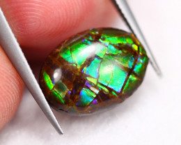 2.24Ct Natural Canadian Ammolite TriColor ~ R98