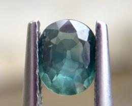 0.92cts Very beautiful Sapphire Gemstones ad21