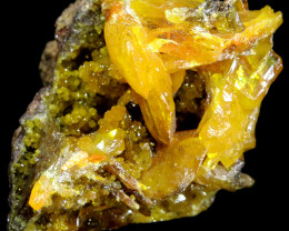 30.25 CTS WULFENITE SPECIMEN ARIZONA [MGW5364]