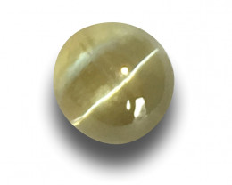 Natural Unheated Chrysoberyl Cat's Eye|Loose Gemstone| Sri Lanka