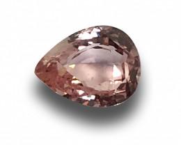 Natural Unheated Orangish Pink Sapphire|Loose Gemstone|New