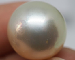 22.50CT  PEARL FROM THE PHILLIPPINES PL40