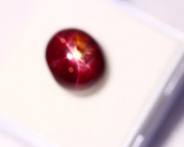 10.79Ct 6 Rays Star Ruby Lot B202