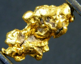 AUSTRALIAN  GOLD NUGGET  1.20 GRAMS  LGN 398