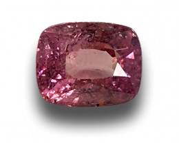 Natural Unheated Padparadscha|Loose Gemstone|Ceylon-NEW