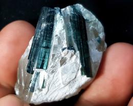 131 Ct Natural Blue Tourmaline Double Crystals in Quartz Specimen