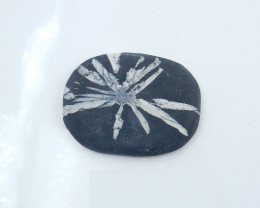 New Arrival Natural Chrysanthemum Gemstone Pendant Polished Gem Black H