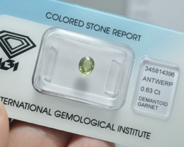 IGI Certificate Demantoid Garnet 0.63 ct