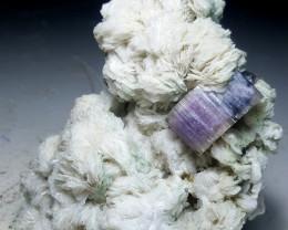 Bicolor Fluoapatite
