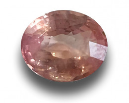 Natural unheated Padparadscha |Loose Gemstone| Sri Lanka-New