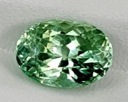 3.75Crt Green Spodumene  Best Grade Gemstones JI135