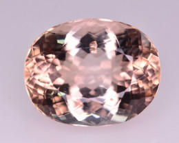 Untreated 16.55 Ct Superb Color Natural Topaz