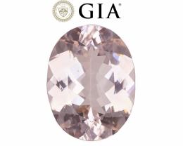 15.69 cts GIA Certified Morganite - VVS - Orangy Pink