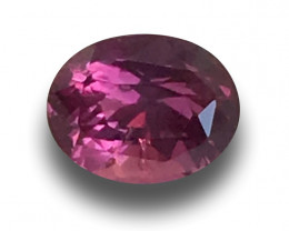 Natural Hot Pink Sapphire|Loose Gemstone|New| Sri Lanka