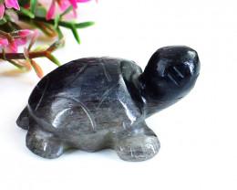 Genuine 49.00 Cts Iolite Carved Turtle
