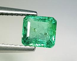 "0.97 ct ""Collective Gem"" Square Cut Natural Emerald"