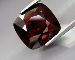 10.52CT Spinel -BURMA NOBLE RED-VERY CLEAN-  THE BEST COLOUR Untreated/Unhe
